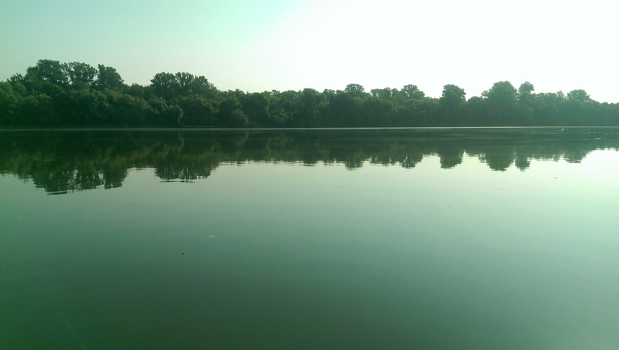 the amazing river TISZA
