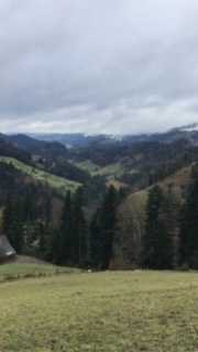 The view from Ruedi's farm
