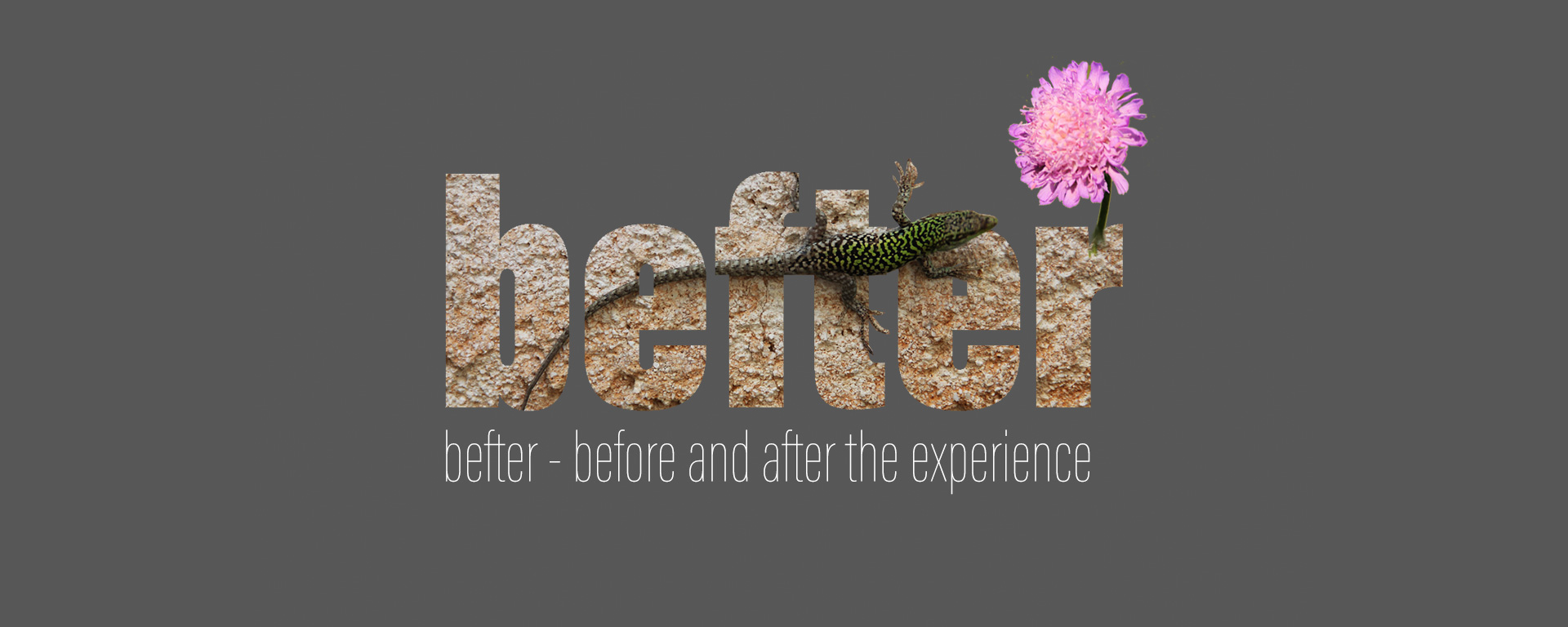 before and after the experience - a new collaborative teaching concept