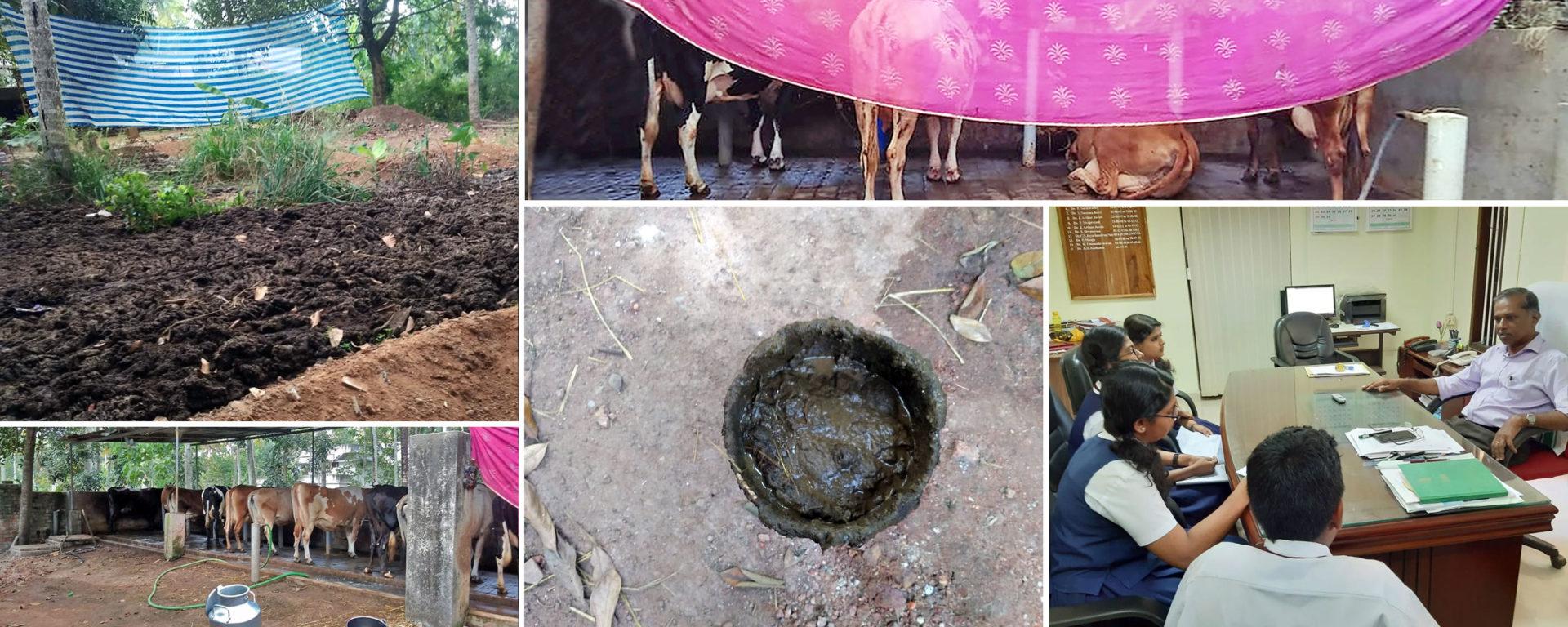 organic farming in Kerala, India