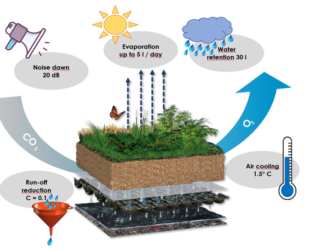 Advantages of a green roof